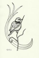 Day17 bird by bebesdupoire