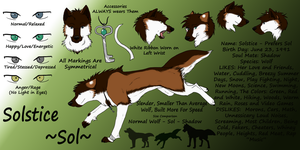 Solstice Reference Sheet by littlezombiesol