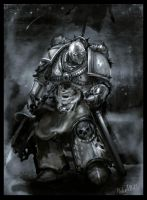 warhammer 40k space marine by PabelBilly