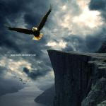 Dare to Soar by Junaedy-Ponda