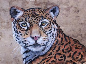 Jaguar of the Pantanal by HouseofChabrier