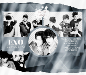 EXO #22   PNGS by fairyixing