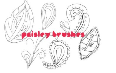 Paisley Pattern Brushes by chicaax