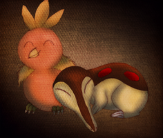 PKMN:ShinyCyndaquilandTorchic by transylvaniandreams