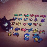 perler beads pokemon... and a real meowth :D by staubtaenzerin