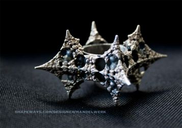 Dragon Fractal Ring - Patinated Silver 3D print by MANDELWERK