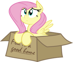 Flutterbox by SLB94