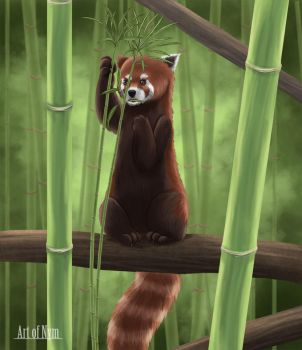 Red Panda by ArtofNym