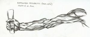 Arm Study by puckatdeviantart