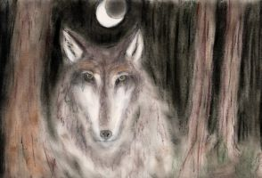 Moon Wolf by CosmicCoz