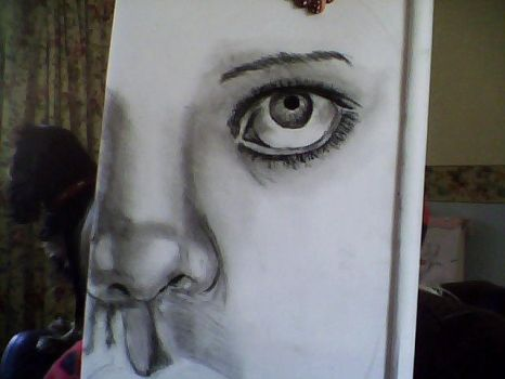 first charcoal drawing in progress 2 :) by elawden