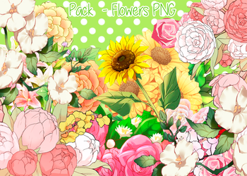 Pack - Flowers PNG #2 by MinmeyPrints
