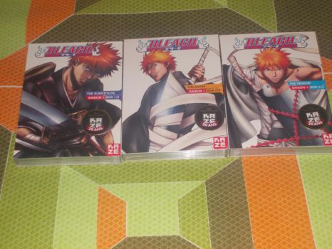 French Bleach DVD Collection box 1 by gekkodimoria