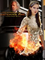 Catching fire by YlianaKapella-Neidon