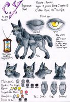 C.Y. New Character Sheet by ARVEN92