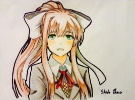 Monika's Questionable Face by Specialization