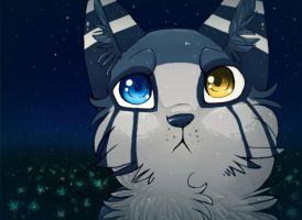 Starry Eyes by hushbee