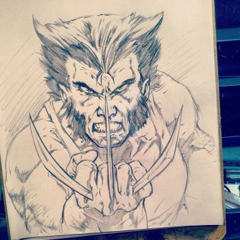 Wolverine warm up by caananwhite