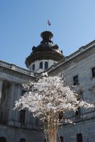 SC State House - Snow -3 by CliftonFomby