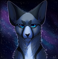 Jayfeather by flash-the-artist
