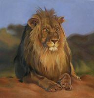 Lion by LuisTomas