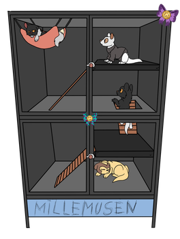 (FN)Cage1 by millemusen