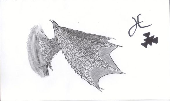 feathered bat wing by ArcticSpider