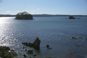Snapper island by imroy
