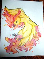 Moltres by F0GBOUND