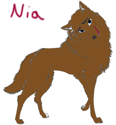 Nia Reference by StarflightHolmes