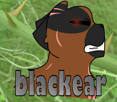 Blackear by Skystar40
