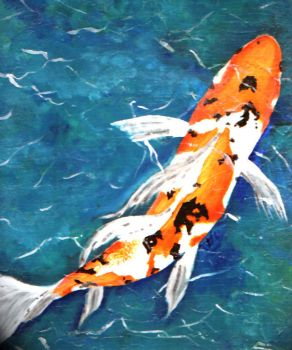 Japanese Butterfly Sankai by Japanese-Koi-Fish