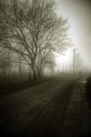 The end of the road by Beezqp