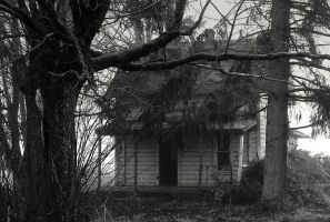 Accursed... by wolfcreek50
