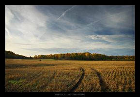 Through Harvested Fields by tfavretto