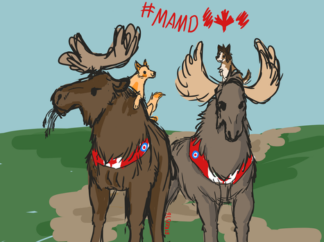 Mounted Aerial Moose Division by EveryoneLovesKoko