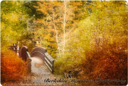 Bridge to Beauty by Leicca