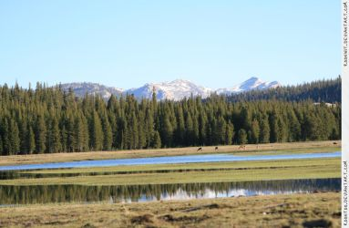 Tuolumne Meadows 2 by RoonToo