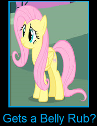 What if Fluttershy gets a belly rub by arvinsharifzadeh