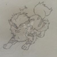 Arcanine by Jaywalk5