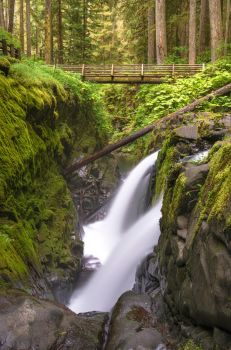 Sol Duc Falls by jasonwilde