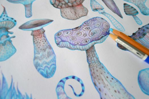 Mushrooms by V-L-A-D-I-M-I-R