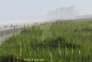 A Hazy Myrtle Beach  by peterkopher