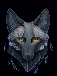 Black fox by Kelshray