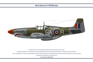 Mustang GB 112 Sqn 1 by WS-Clave