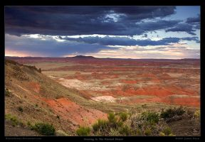 Evening in the Painted Desert by Rhavethstine