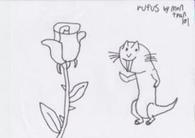 Rufus And the Rose by montrain101