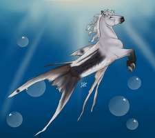Hippocampus Adopt For Sale by NorthernMyth