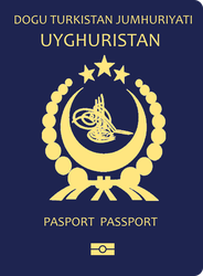 Fictional Uyghur Passport by kyuzoaoi