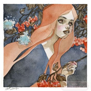 Cotoneaster by nati